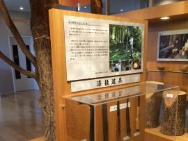 kawatsura014_2